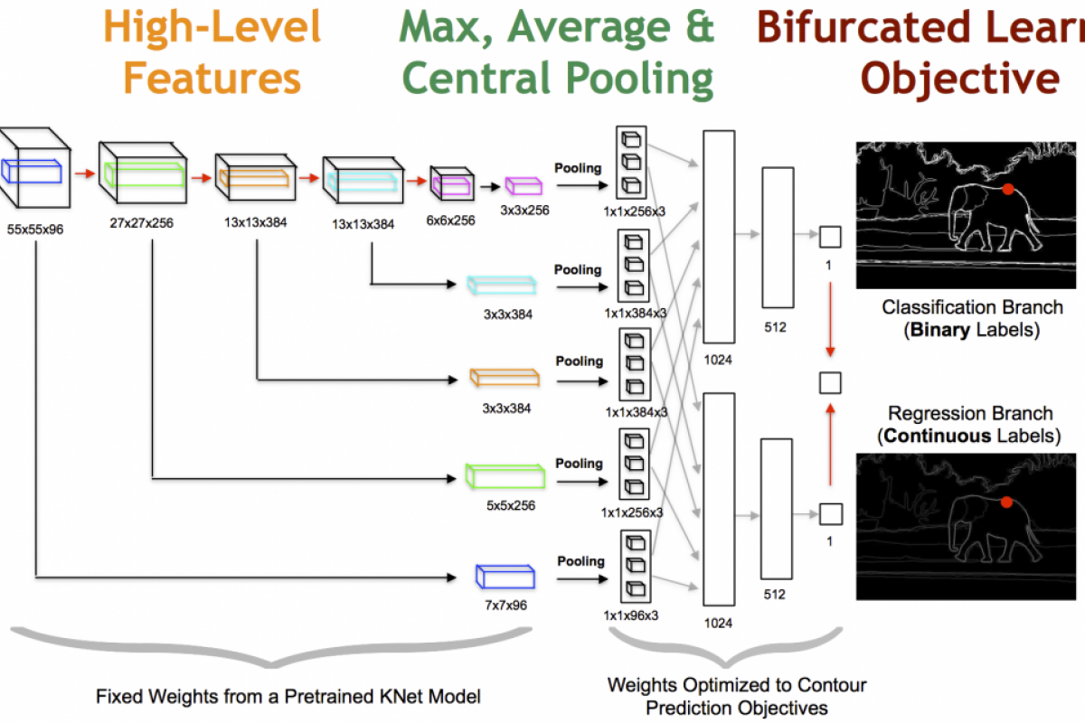 DeepEdge: A Multi-Scale Bifurcated Deep Network for Top-Down Contour Detection